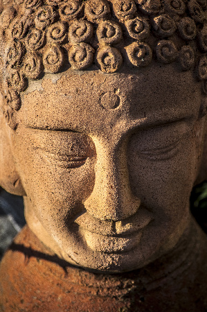 Buddhasized